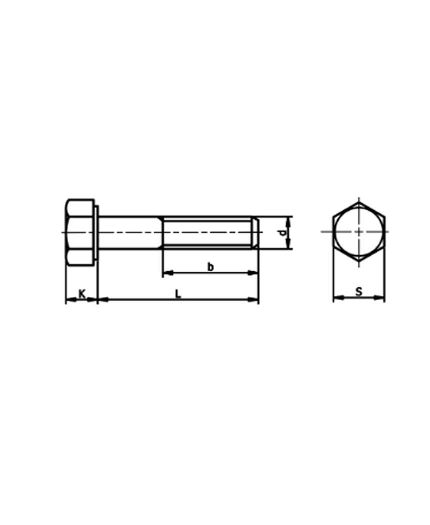 สกรู DIN933 , ISO4017